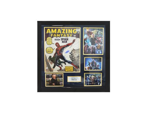 Spiderman Memorabilia as a prize at a fundraising auction